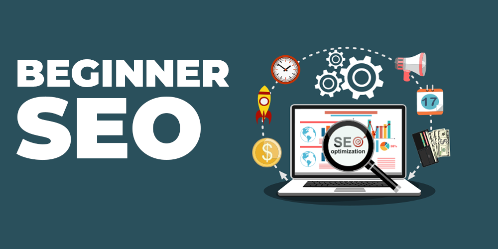 beginner seo course