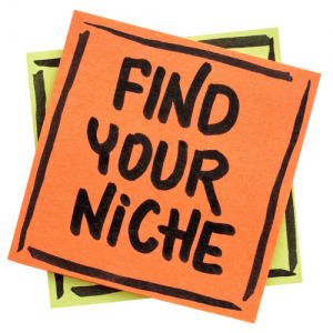 choose a niche blog