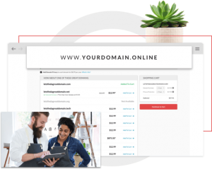get domain from domain com